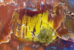 Abstract-Versteend-hout-